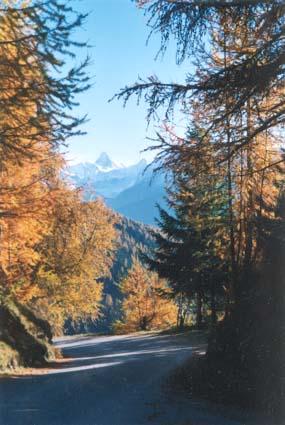Vue en automne depuis la terrasse